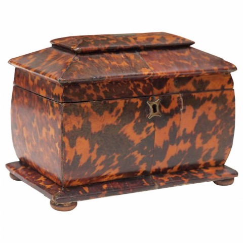 English Regency Tortoishell Tea Caddy